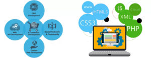 website design and development company in Mumbai
